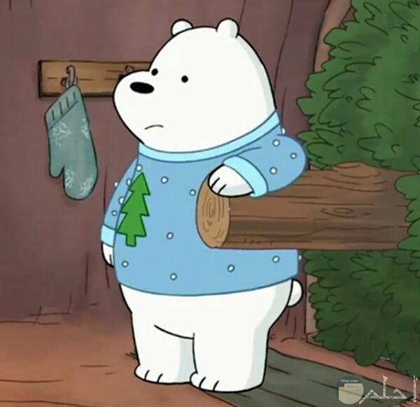 صورة كرتون نتورك بالعربية جميلة عن كرتون الدببة الثلاثة ويظهر في الصورة الدب قطبي وهو يسند علي جذع شجرة