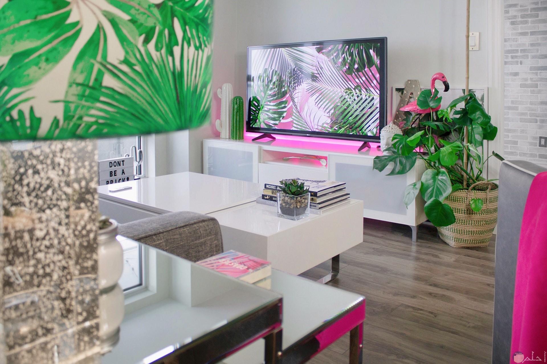 صورة لغرفة استقبال الضيوف يوجد بها طاولة بيضاء جميلة وشاشة تلفاز صغيرة مع بعض الزينة المميزة