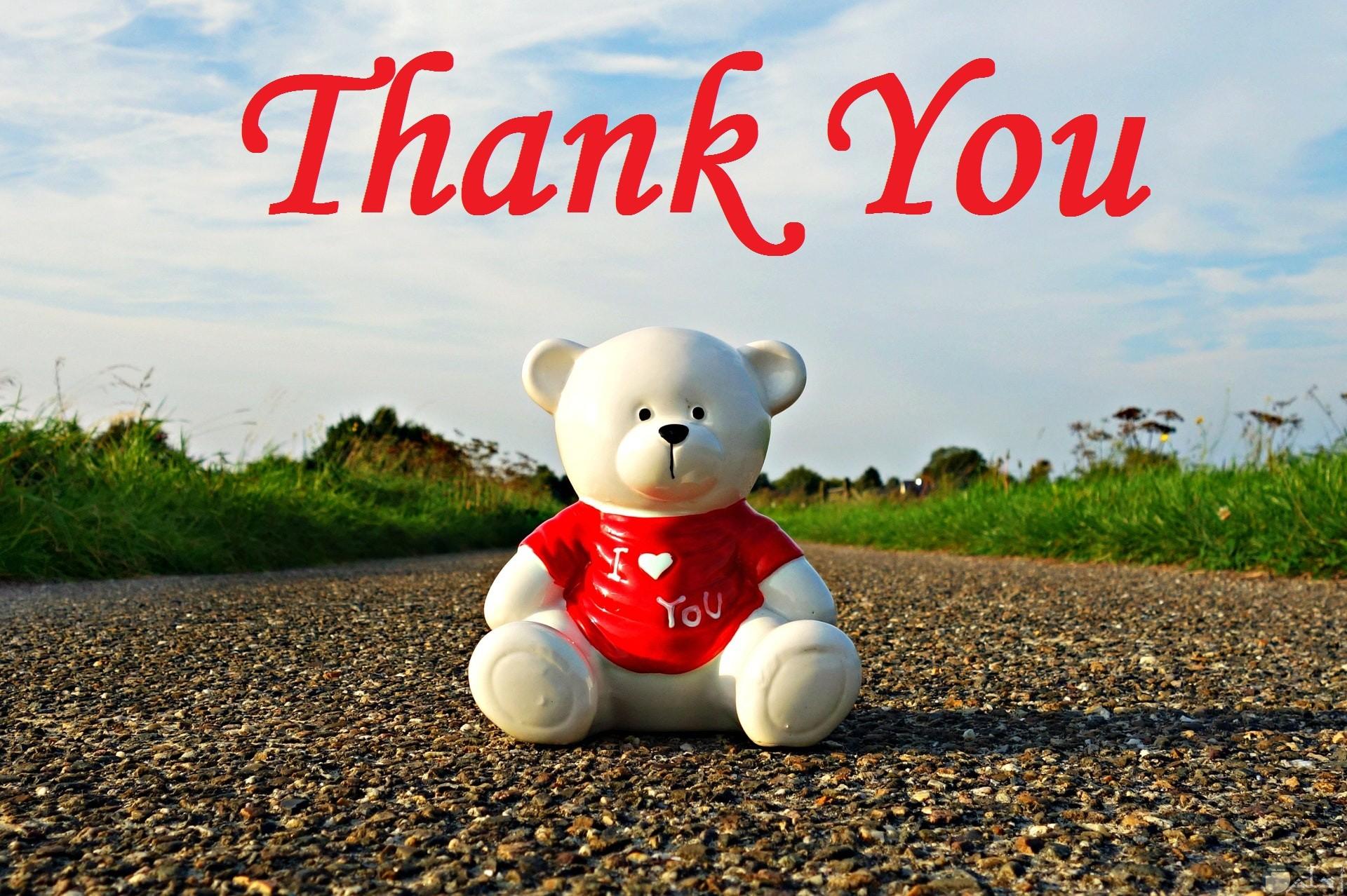 صورة مميزة جدا للتعبير عن الشكر بالإنجليزي مع دب جميل