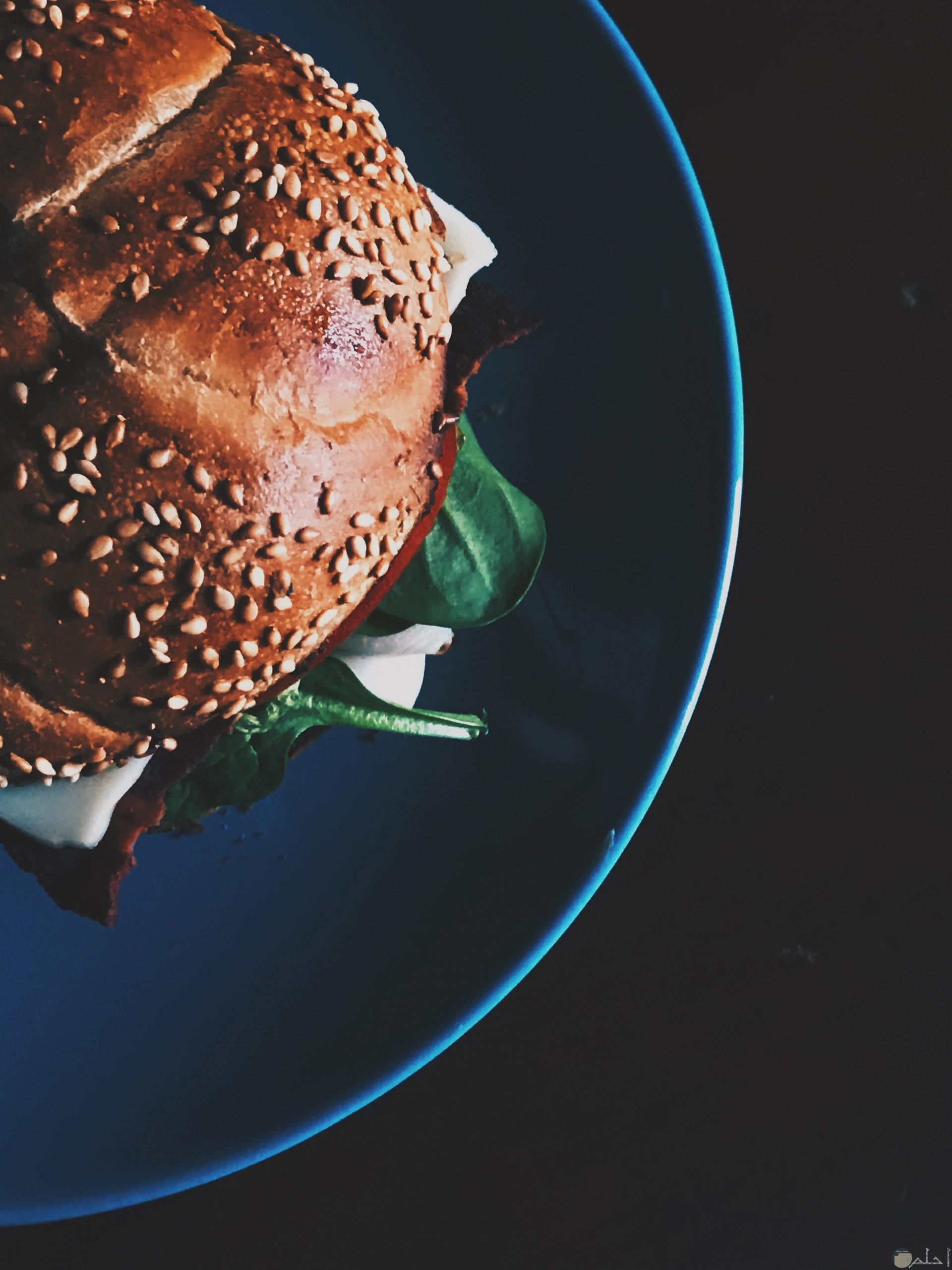 صورة مميزة لساندوتش برجر شهي علي طبق أزرق