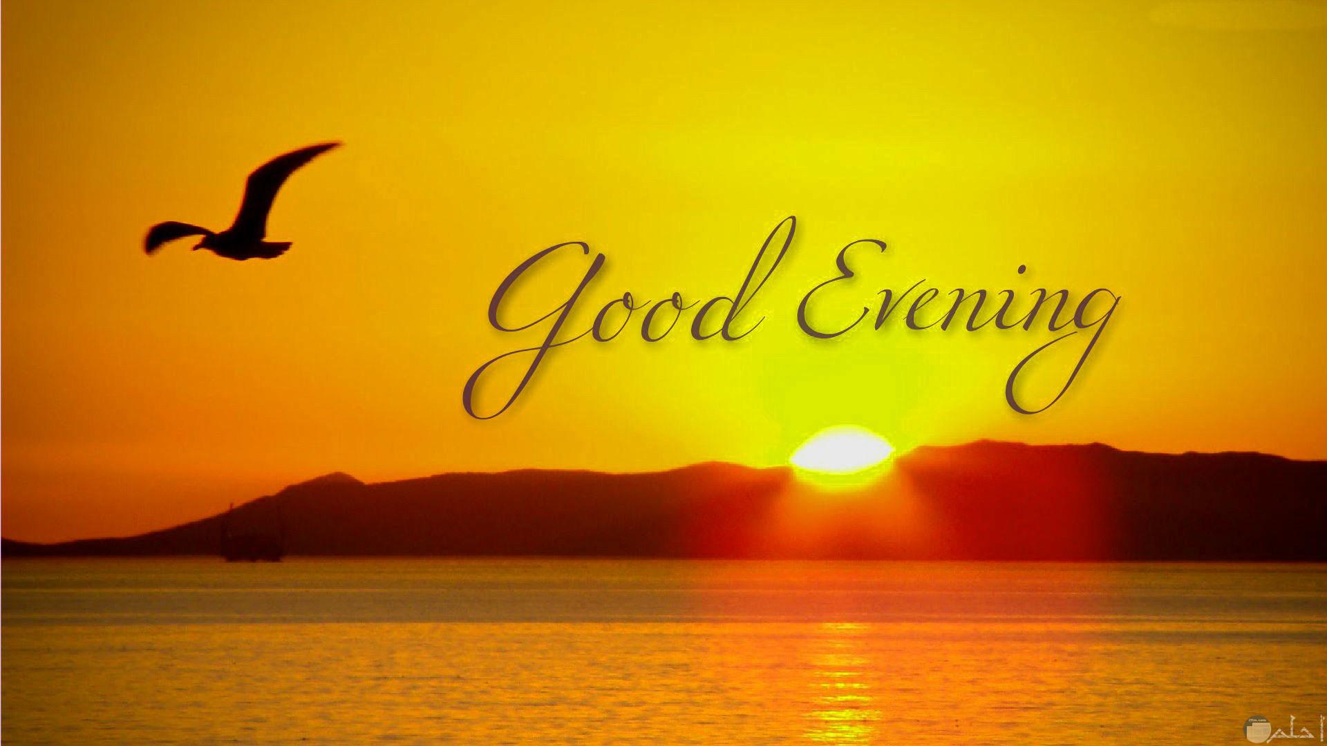 صورةgood-evening