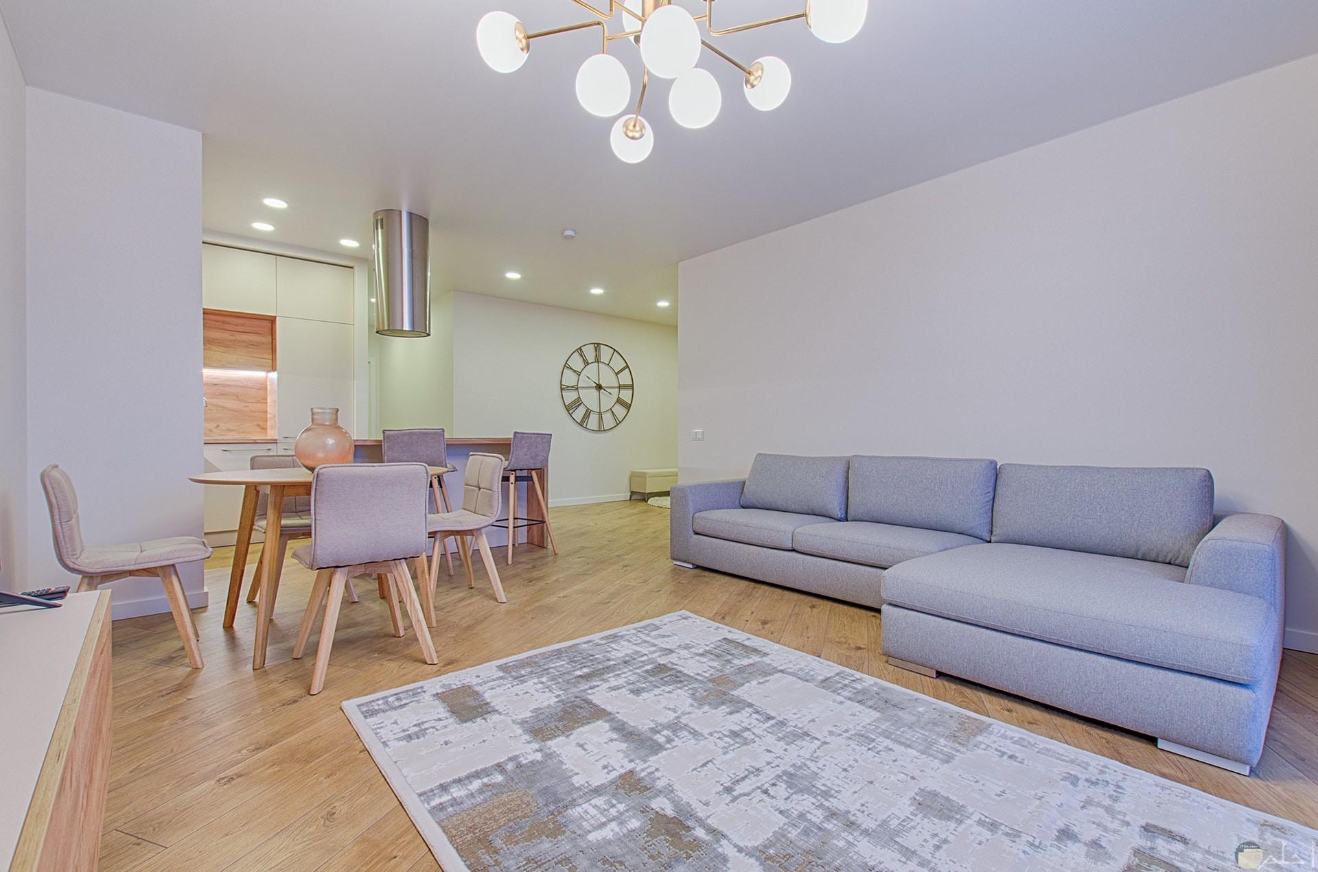 صور جميلة لديكور غرفة المعيشة متناسقة من الكراسي والكنب باللون الرصاصي المميز