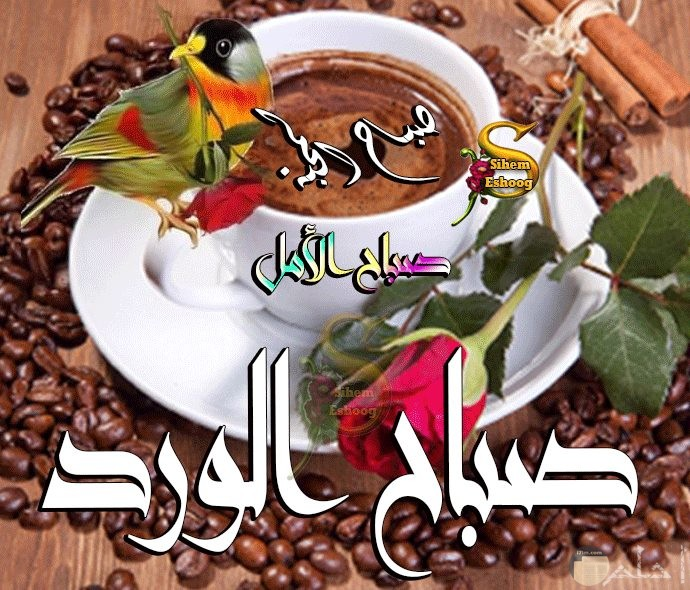 فنجان ابيض وبن خرز حوله وورده تحيه صباح الخير