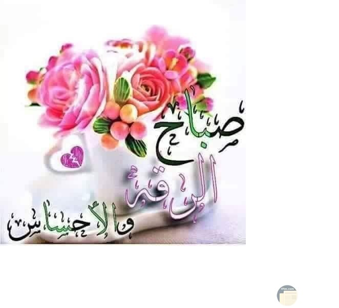 صوره صباح الرقه والاحساس بها باقه من الورود