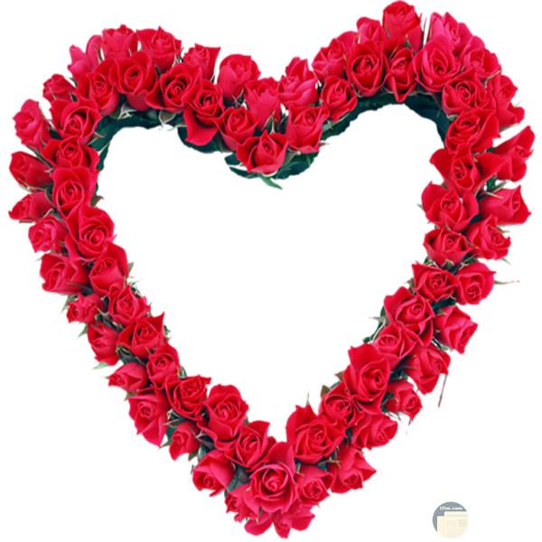 Png سكرابز قلب