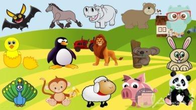 صور حيوانات كرتون