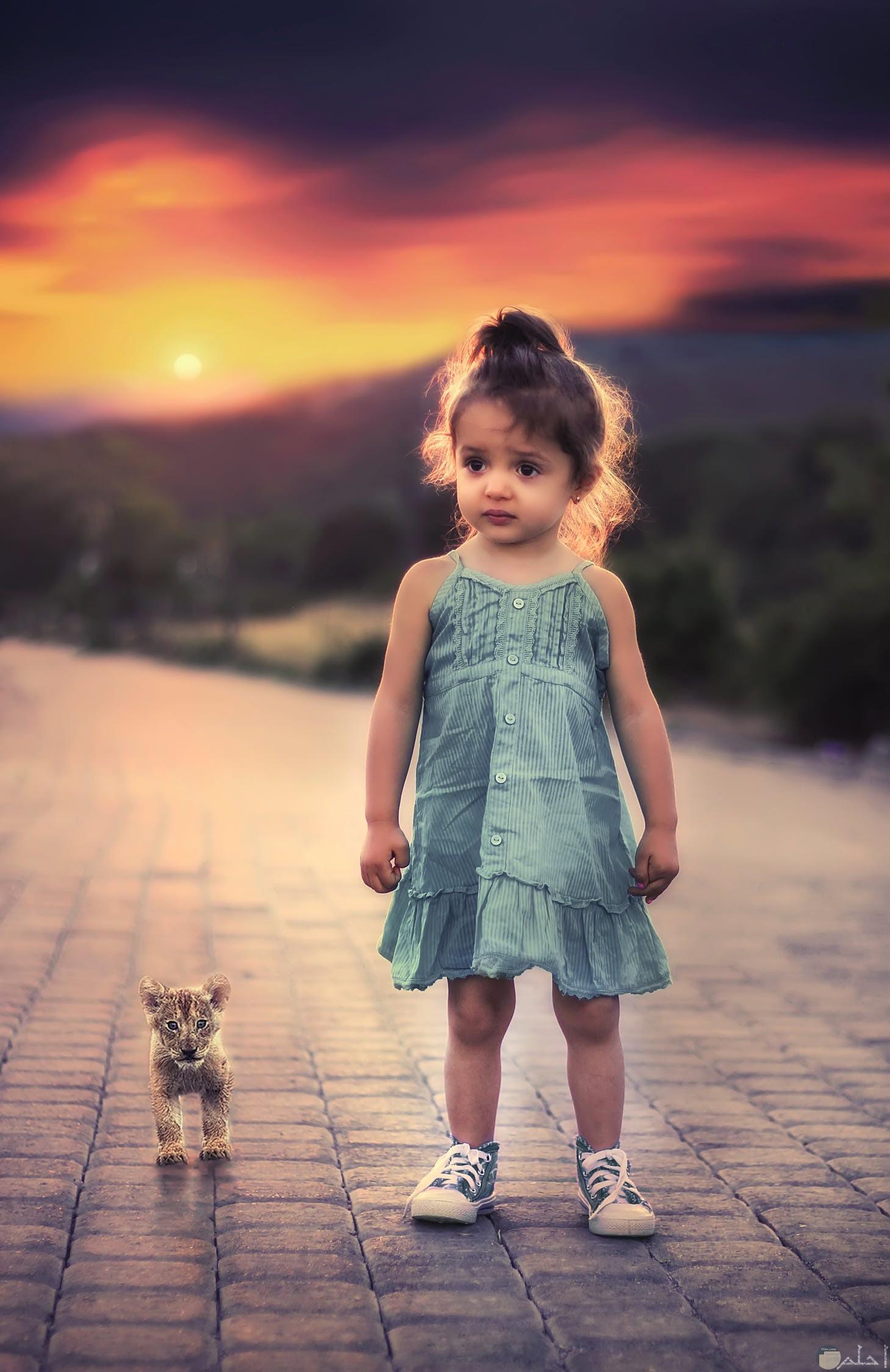 طفلة غاية في الجمال مع قطتها