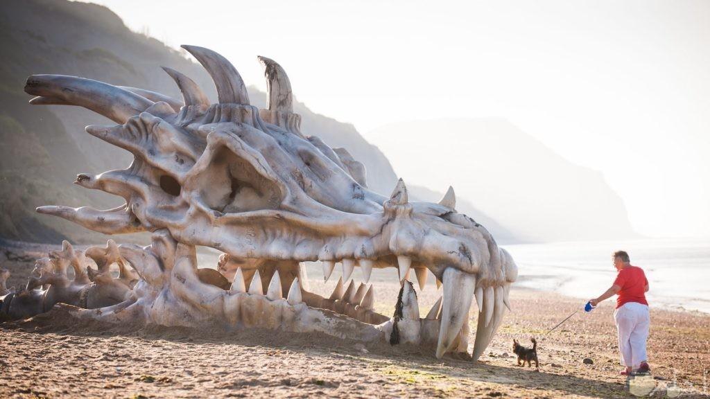 صورة لهيكل عظمي ضخم علي البحر