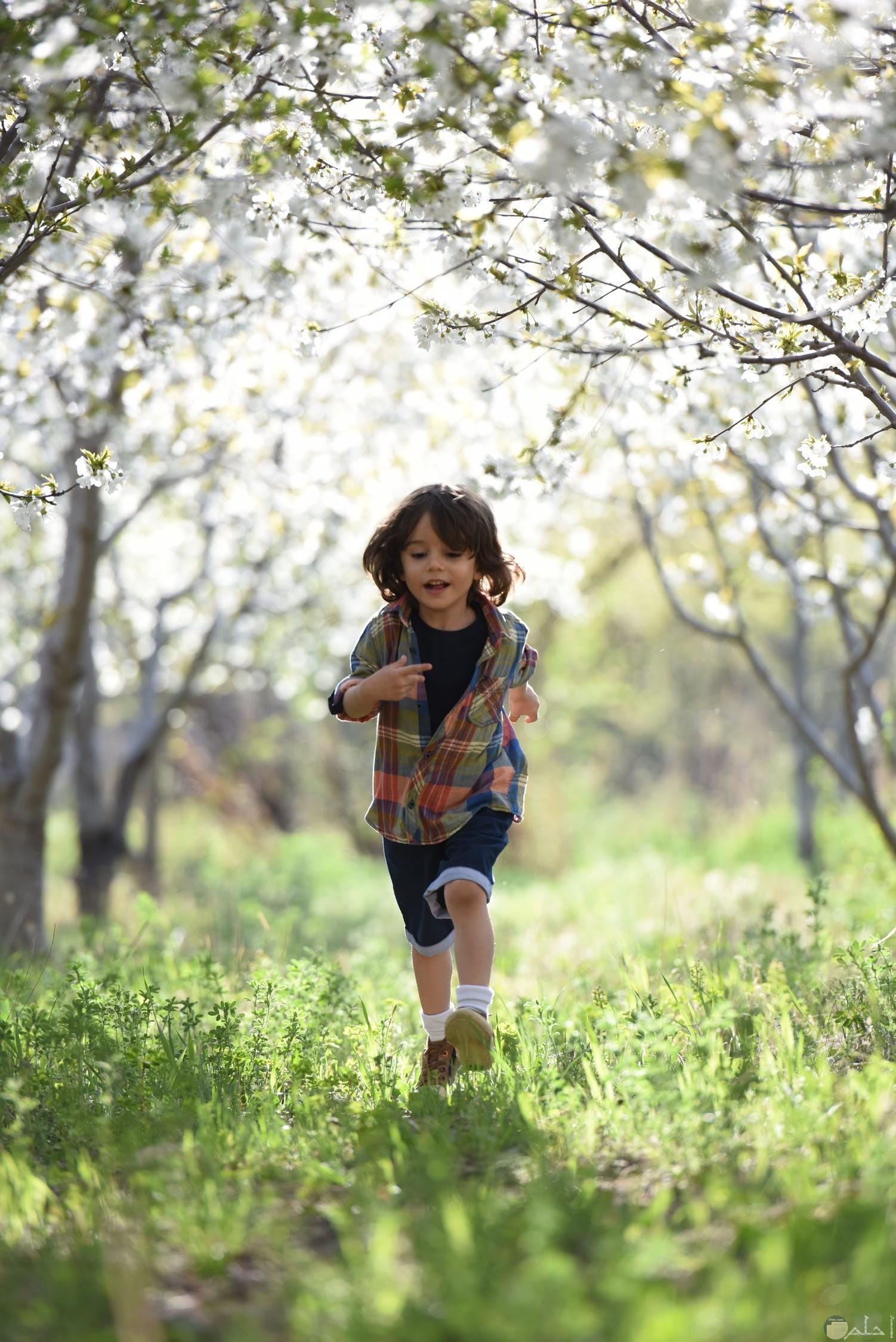 ولد جميل وشقي يجري ويلعب في الطبيعة