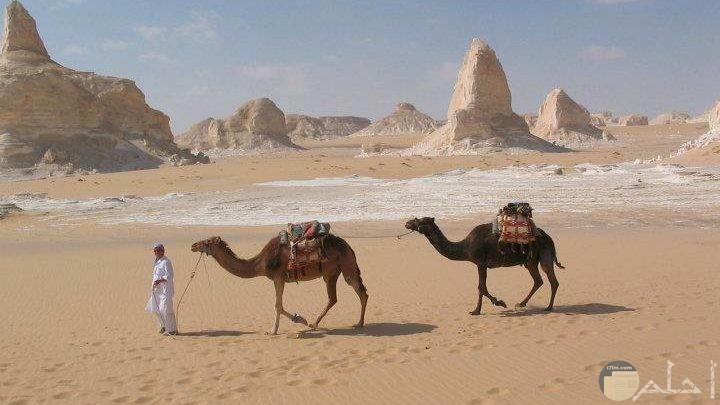 صور مصر اجمل 10 صور سياحة بمصر