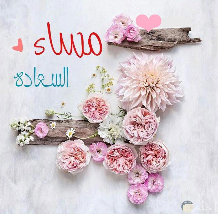 تحيه مساء السعاده وورود بالوان مختلفه علي خشبه غصن شجره