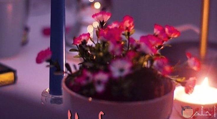 صورة مساء النور
