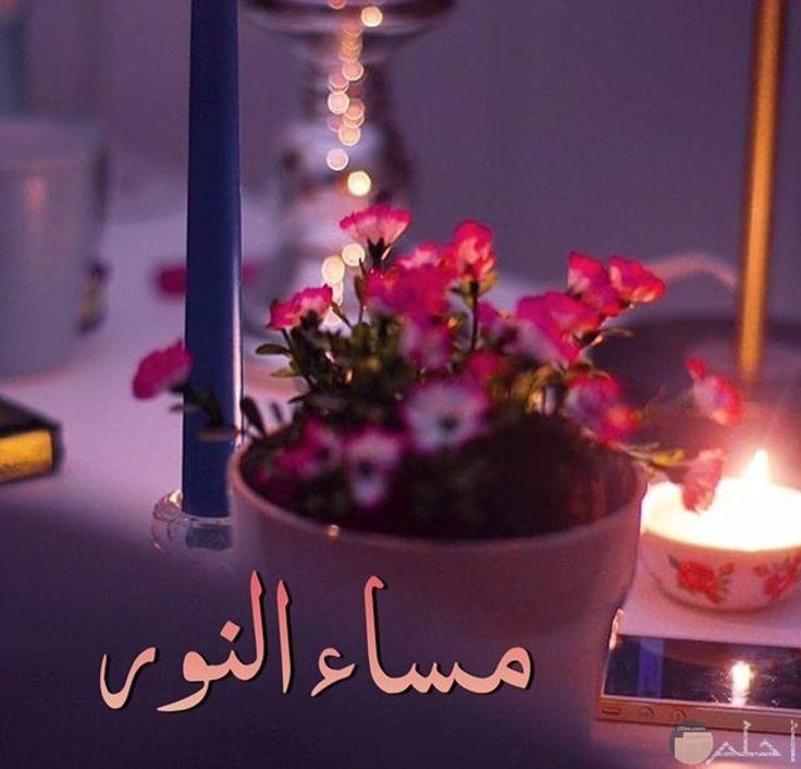 فاظه بها ورود باللون الروز وبجوارها شمعه مشتعله بتحيه مساء النور