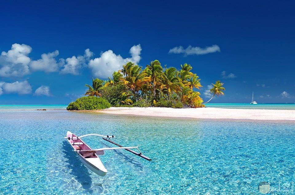 صورة لجزيرة وسط بحر غنية بالاشجار والنباتات الرائعة