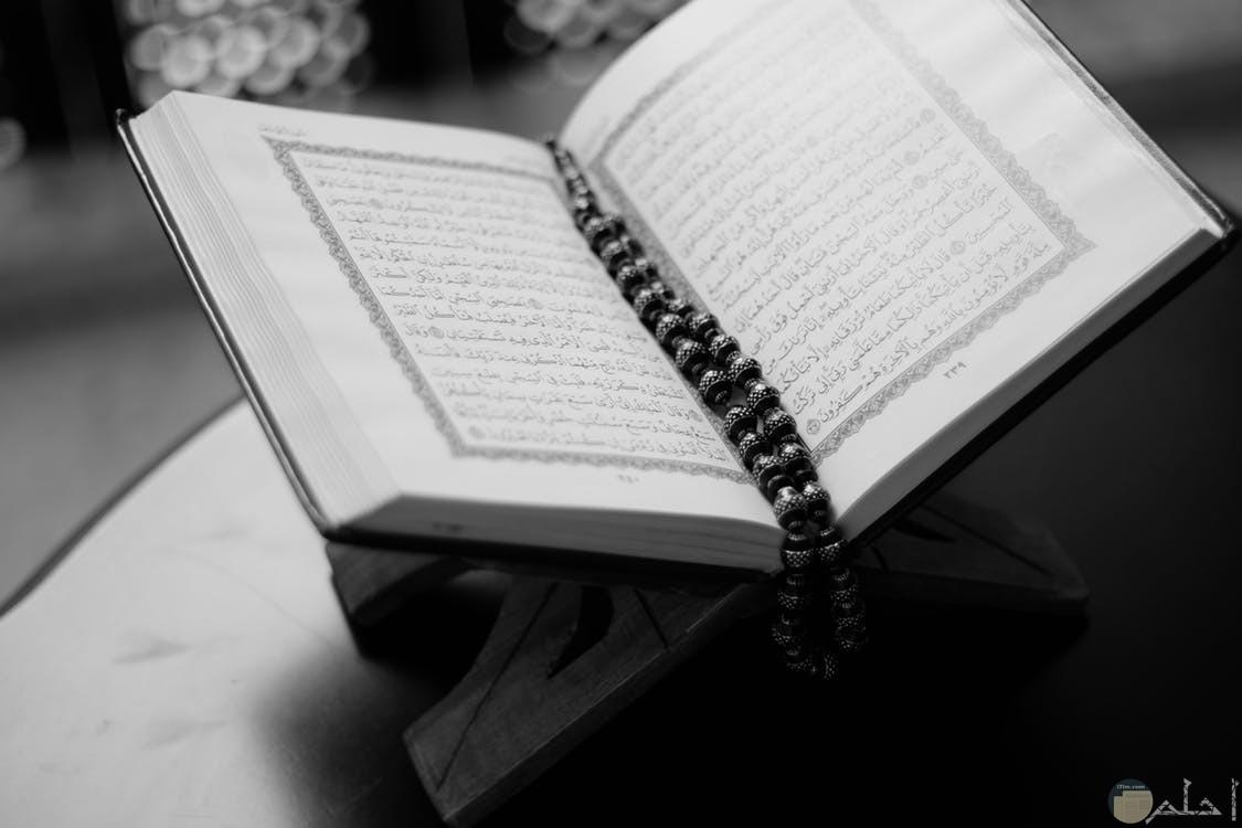 صور دينية المصحف الشريف