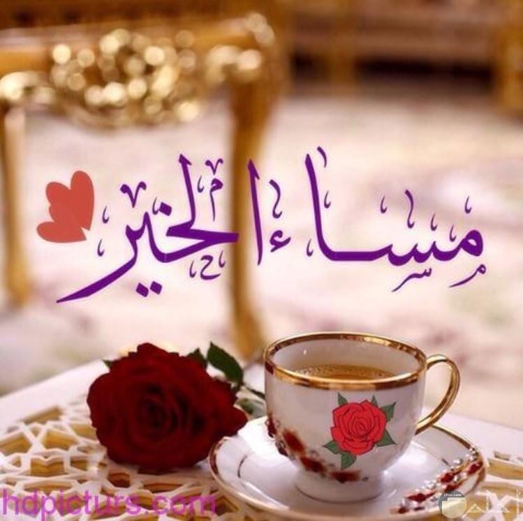 تحيه مساء علي الاصدقاء صوره بها فنجان قهوة وورده حمراء