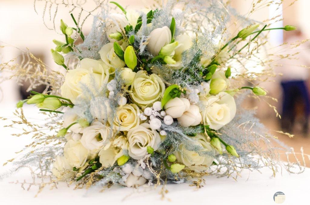 مجموعة من الزهور البيضاء الجميلة