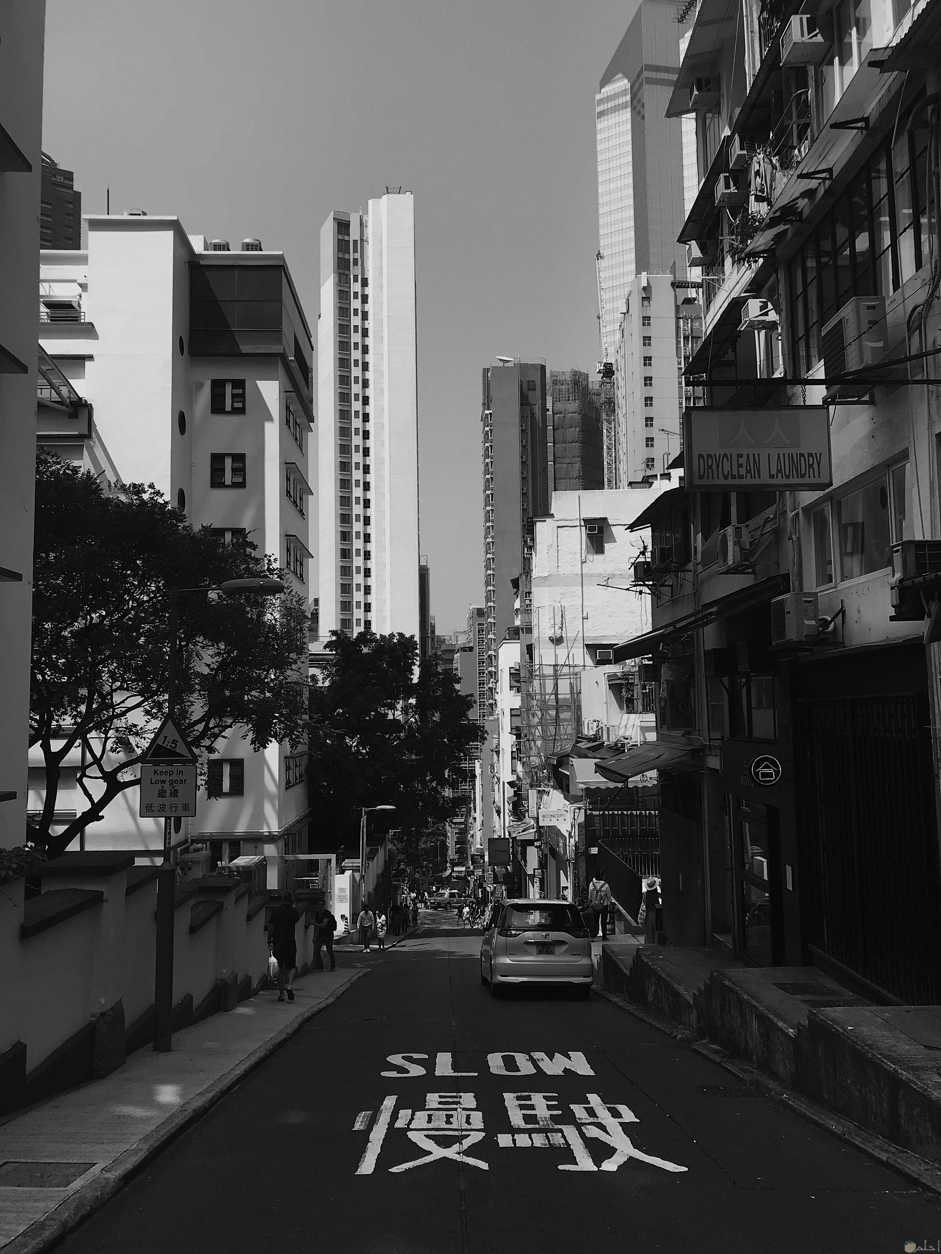 صور ثيمات للمباني والشوارع قديما