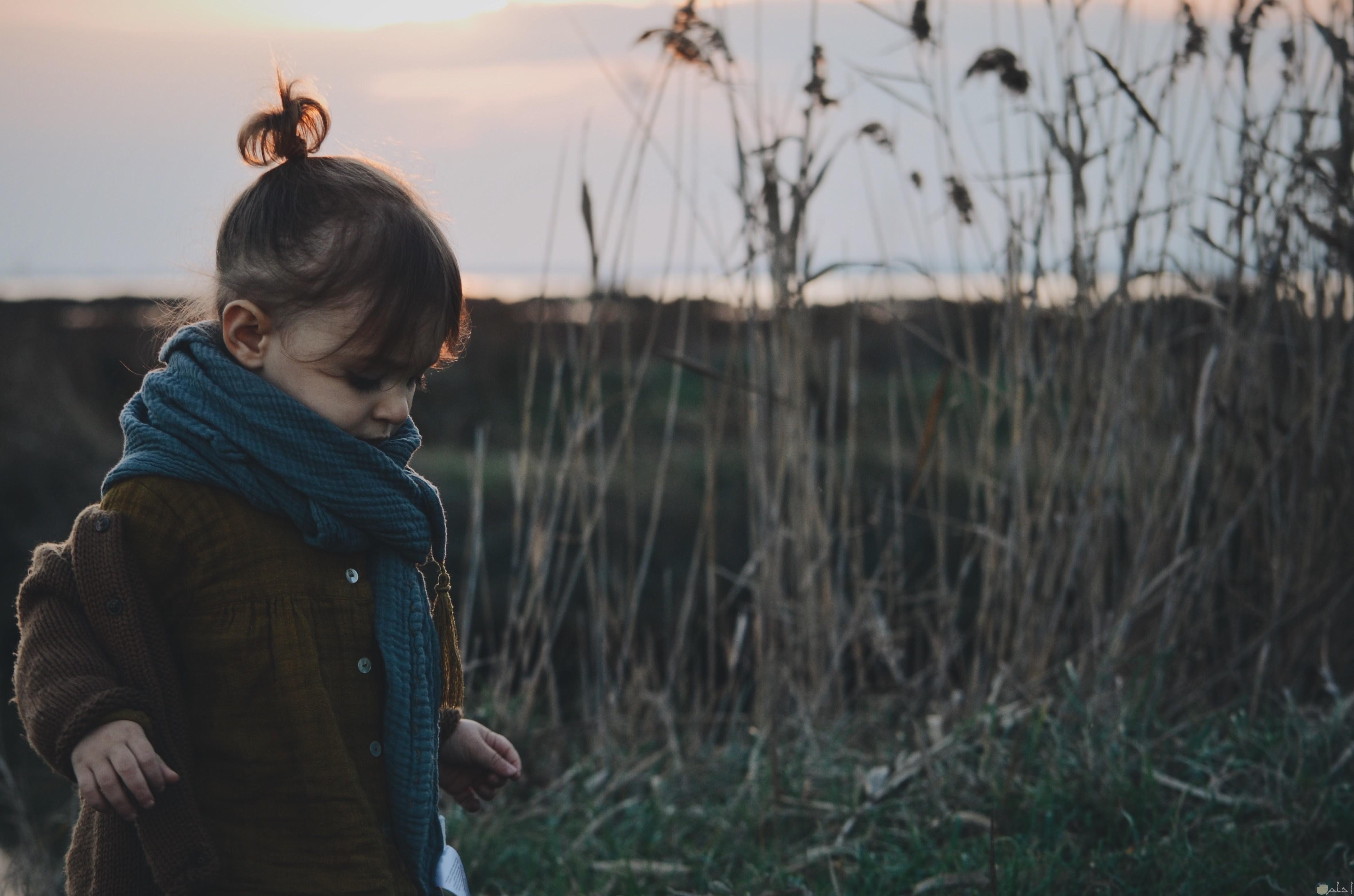 بنت تنظر للارض وسط الغاب