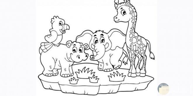 تلوين حديقة الحيوان