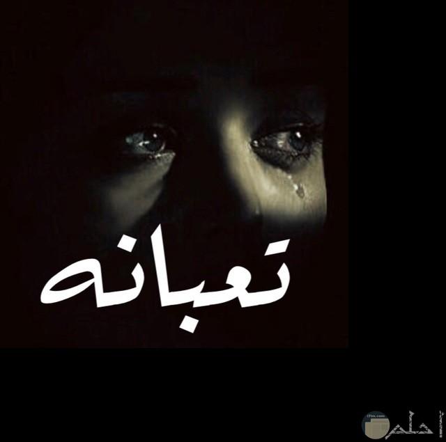 صورده سودار لعين تبكي مكتوب عليها تعبانه بالابيض