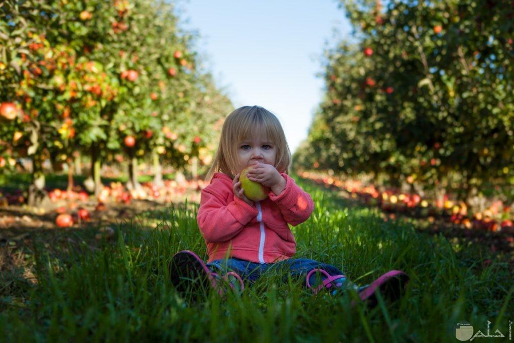 بنت كيوت تجلس في الحديقه تاكل فاكهه