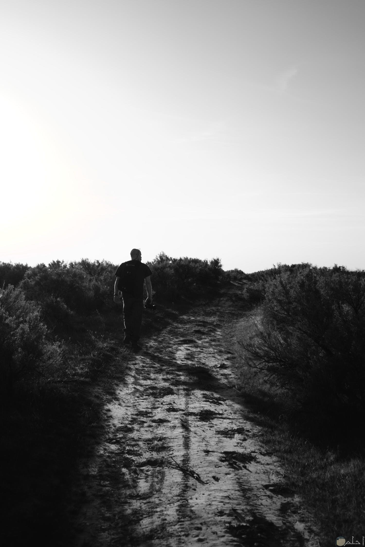 رجل يمشي في غابة وحيداً