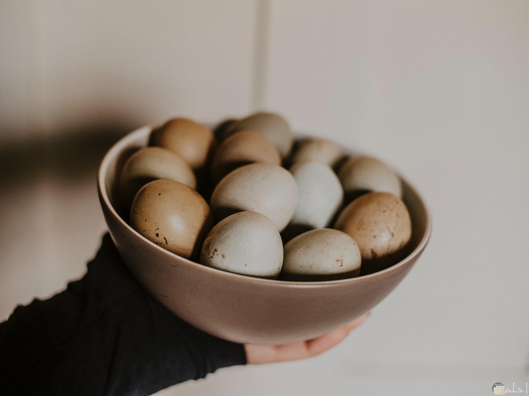 فطور بيض مسلوق