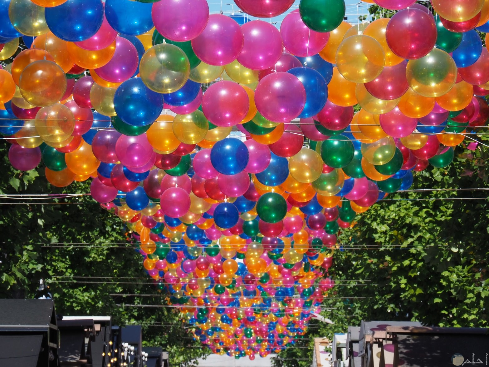 صور بالونات تجنن وألوان مبهجة