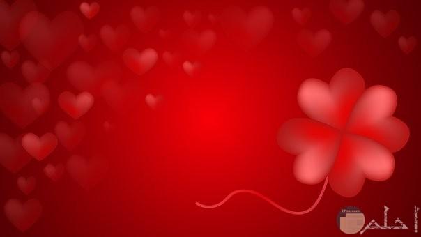 خلفية حمراء قلوب وورد