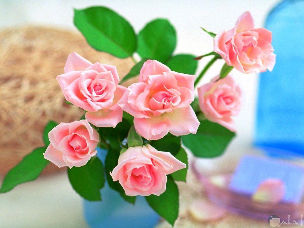 باقة زهور رقيقة وجميلة