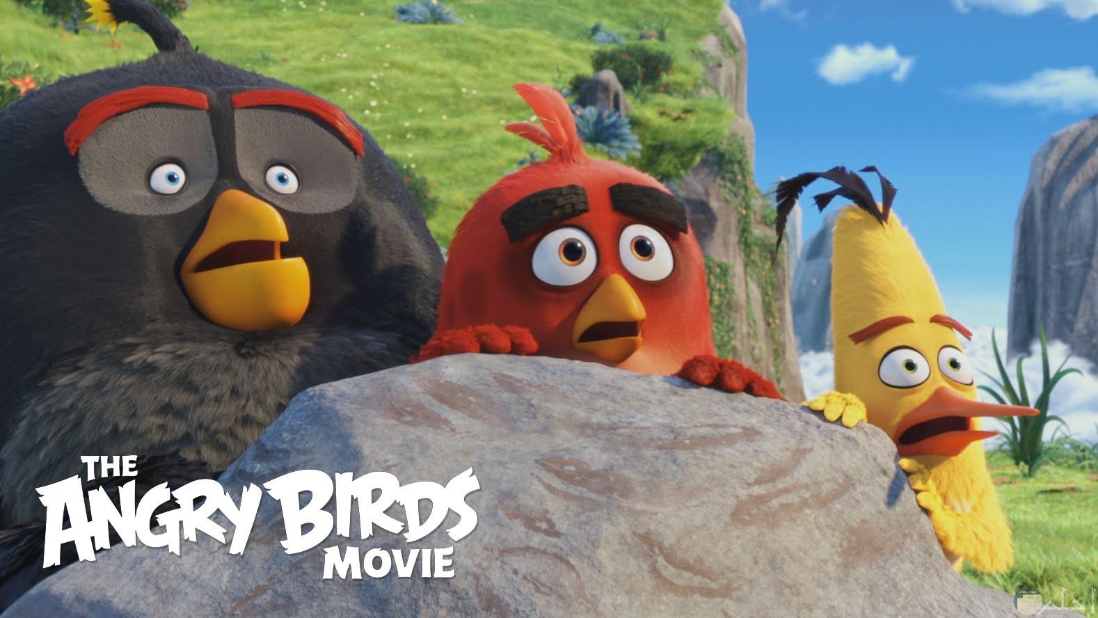 صورة بوستر فيلم الطيور الغاضبة