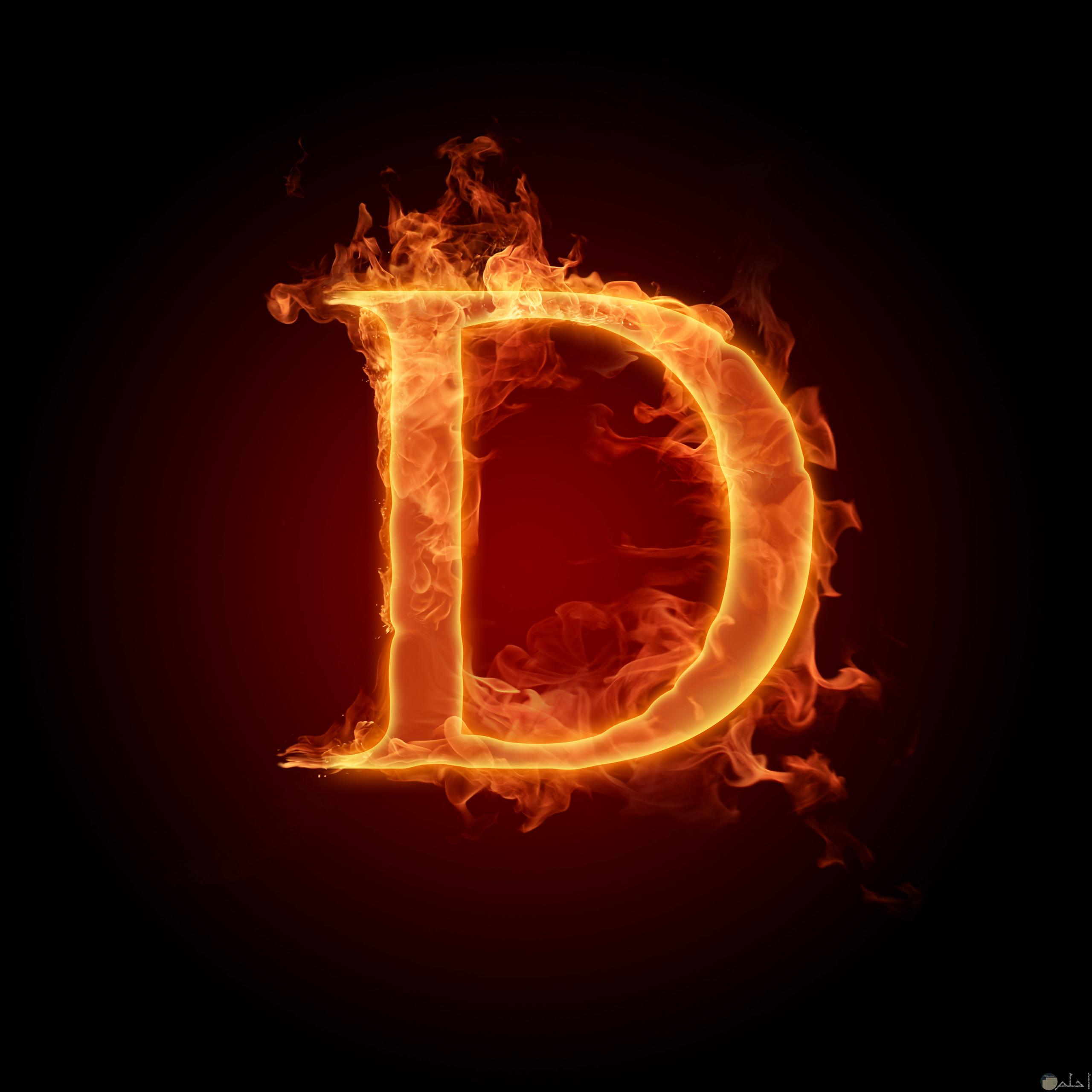 حرف D ناري