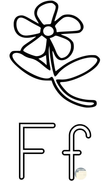 حرف F للتلوين