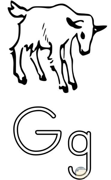 حرف G للتلوين