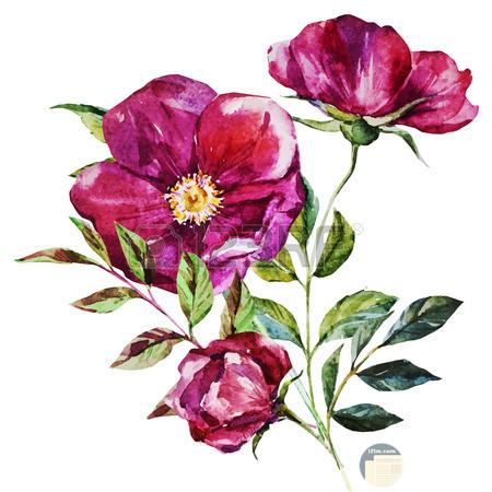 وردة جميلة مرسومة بشكل رائع