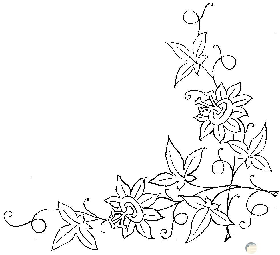 زهور جميلة للتطريز