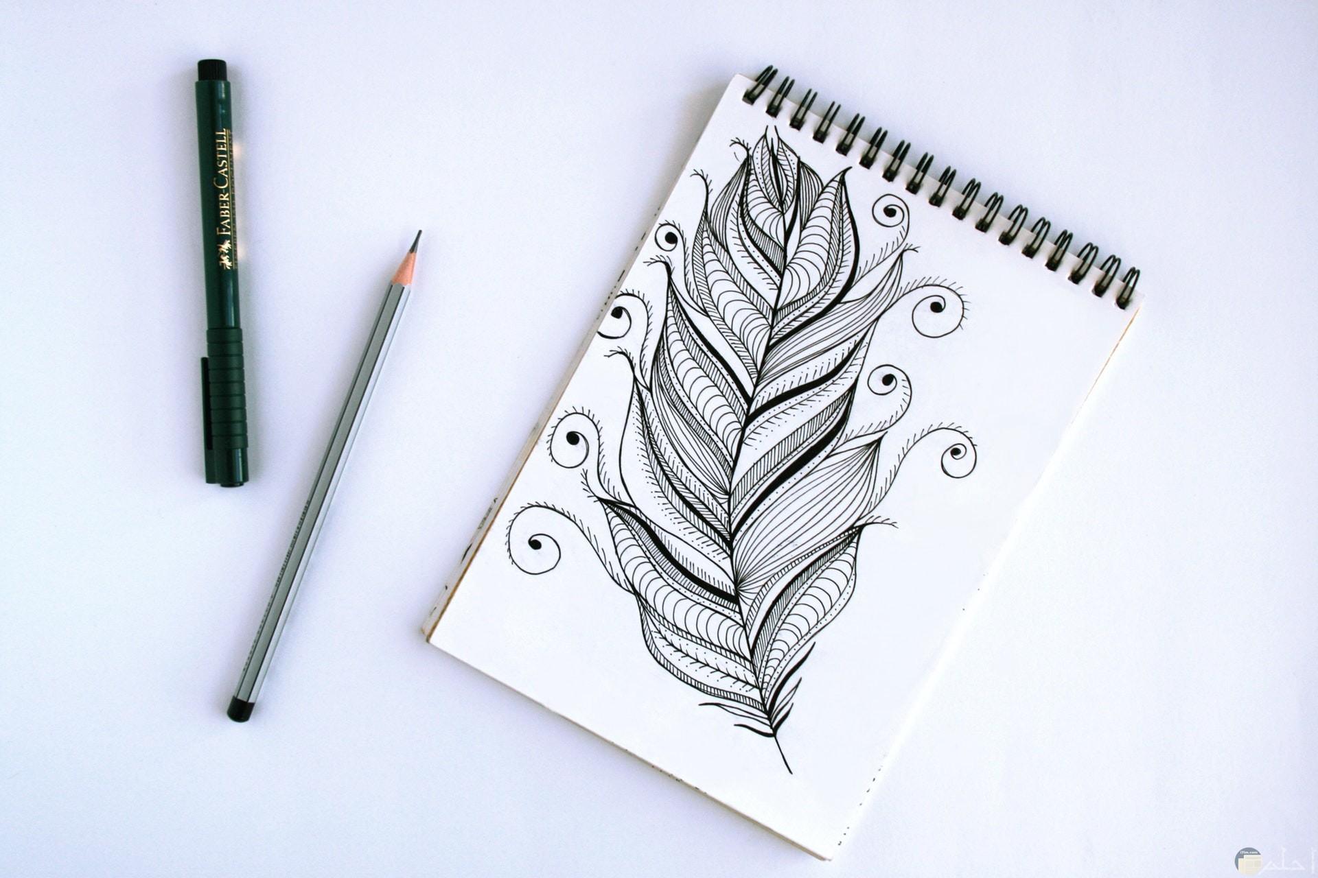 صورة جميلة لرسمة ريشه بالقلم الرصاص