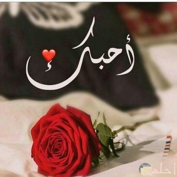 صور عبارات حب وغرام7