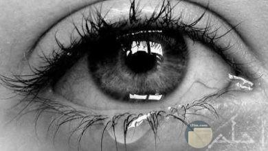 صور حزينة انستقرام مؤثرة ومبكية