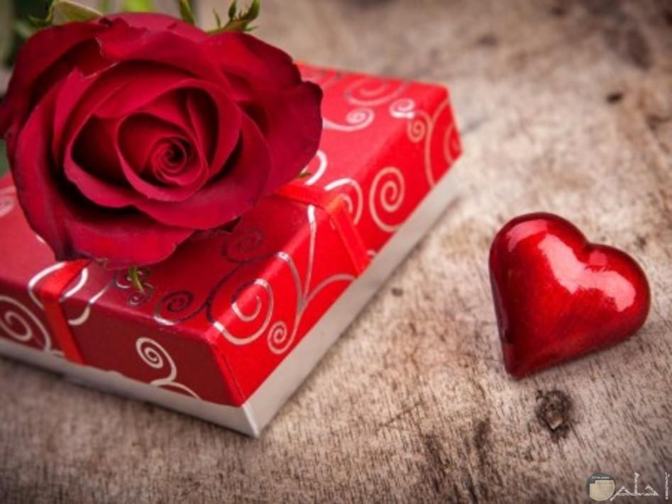 هديه مغلفه وعليها ورده حمراء وبجوارهم قلب احمر