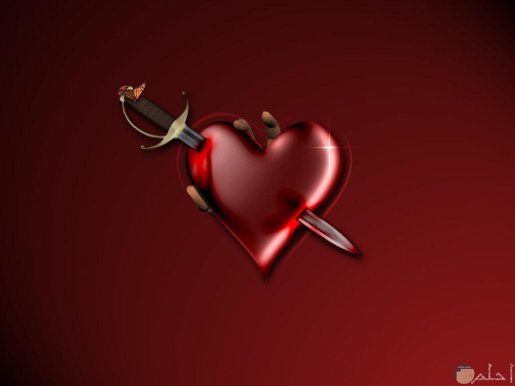صوره قلب احمر مجروح بسيف وعليه اصاابع من الخلف