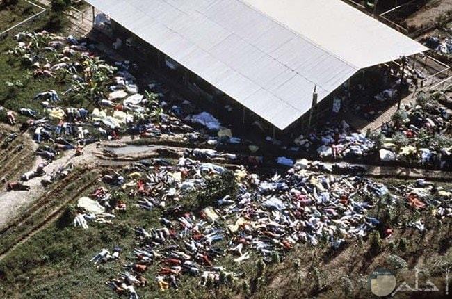 صورة مرعبة لمائات من البشر المقتول ومتناثر على الارض
