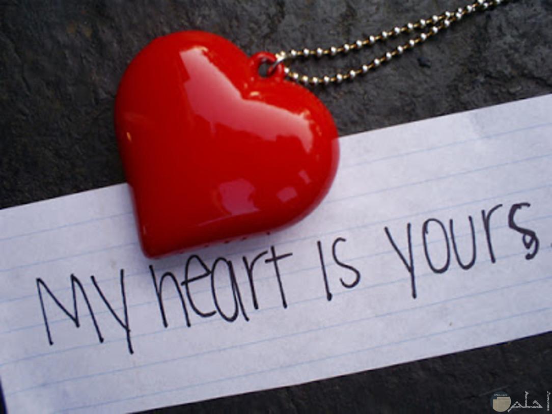 قلبي ملكك