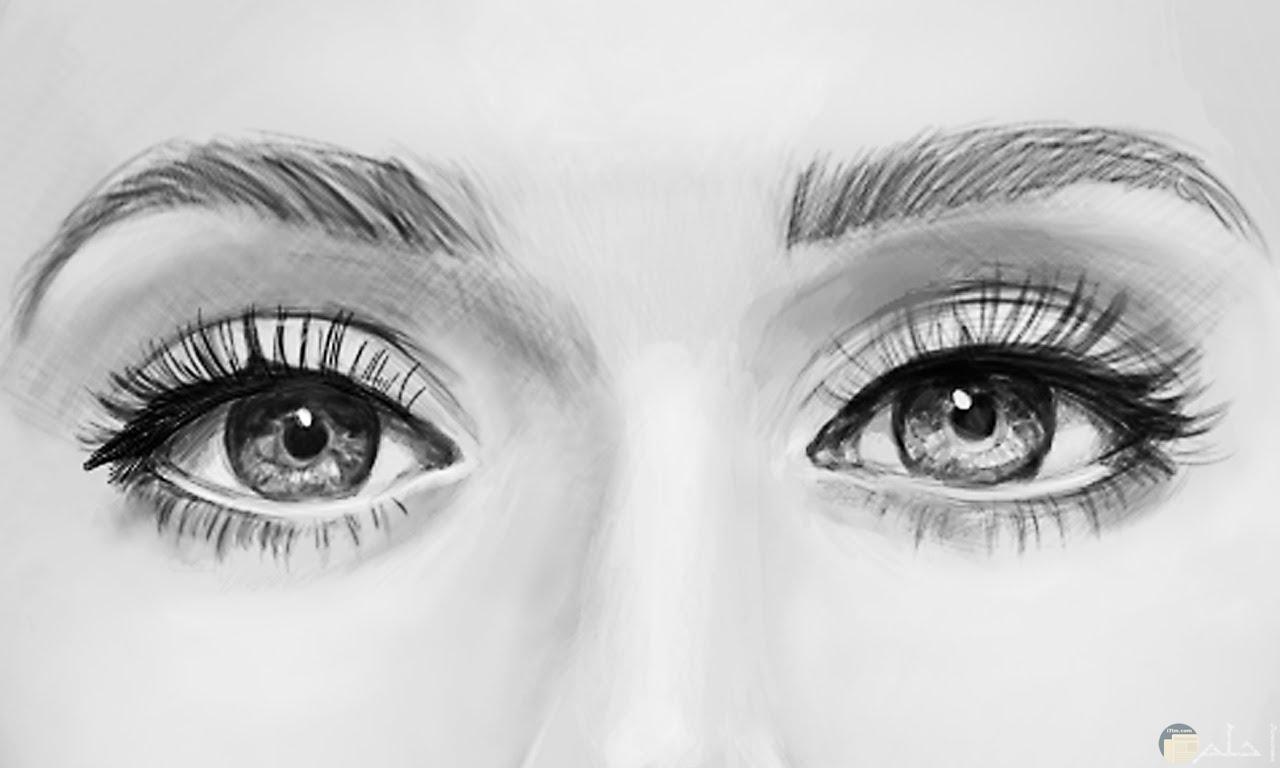 عيون بالرصاص جميلة جداً