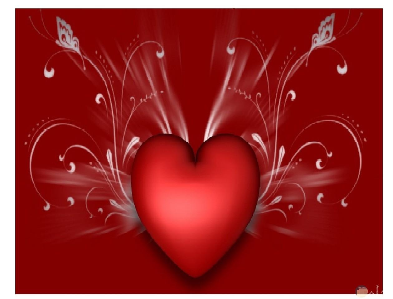 قلب أحمر جميل