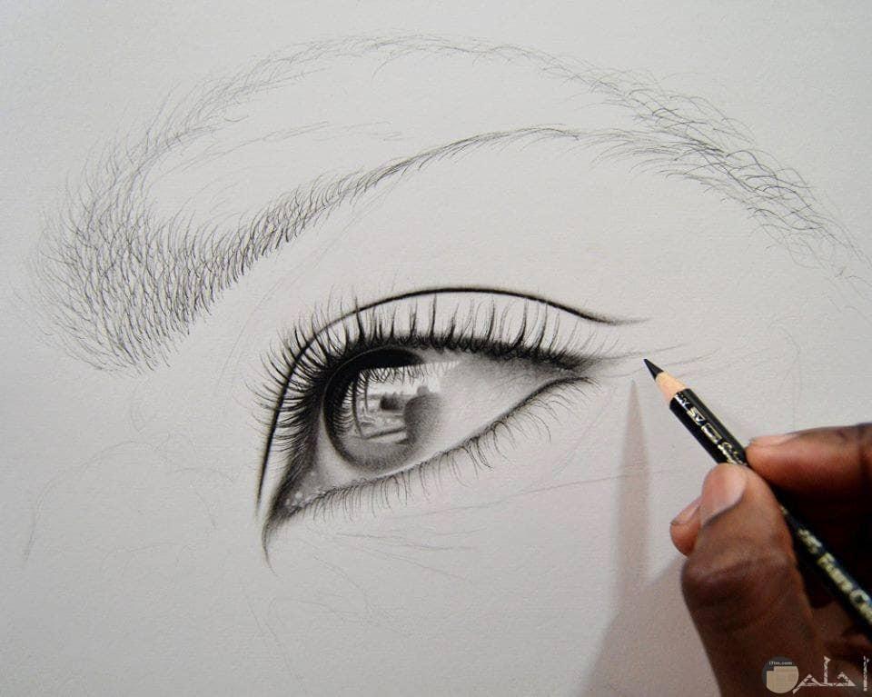 انظرو كيف يبدع الفنان في الرسم بالرصاص