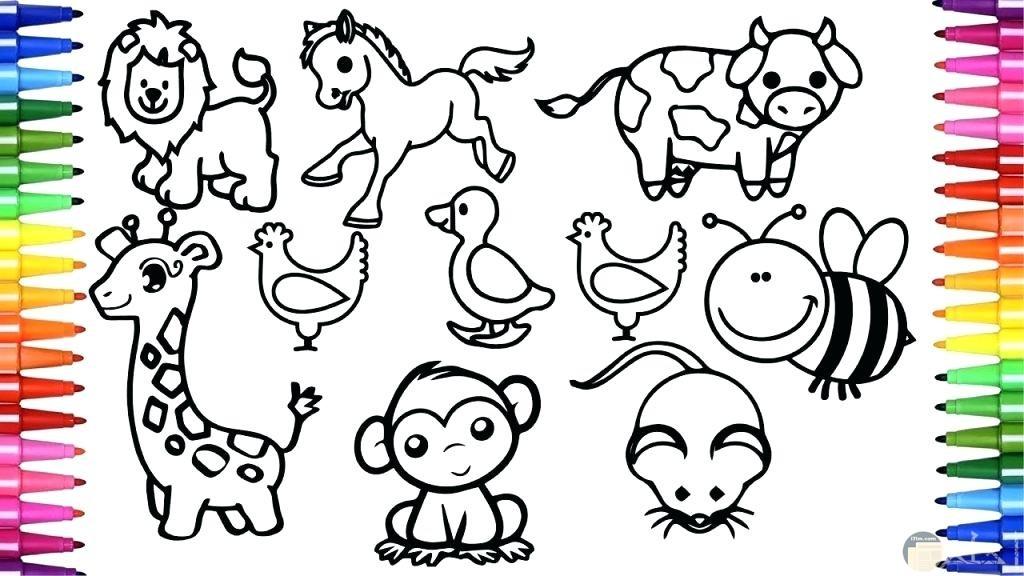 صور حيوانات للتلوين 11