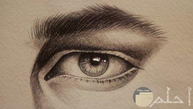 عيون مرسومة بالرصاص جميلة جداً