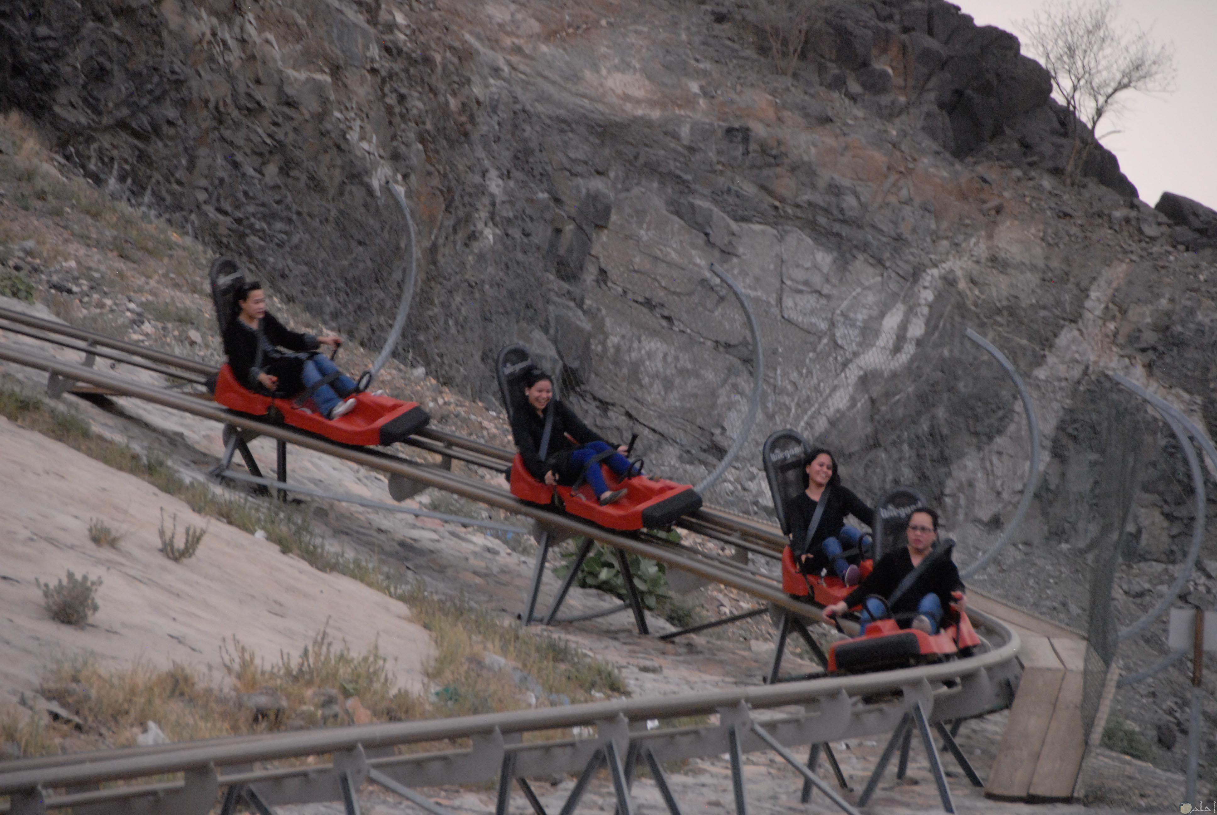 رياضة و متعة الهبوط من الجبال بالزلاجات بالطائف.